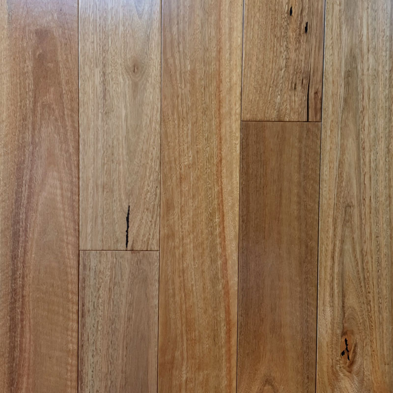 Wonderful Floor Pre Finished Solid Timber Spotted Gum Pacific
