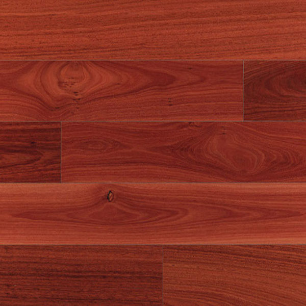 Clever Choice Australian Species Engineered Timber Jarrah