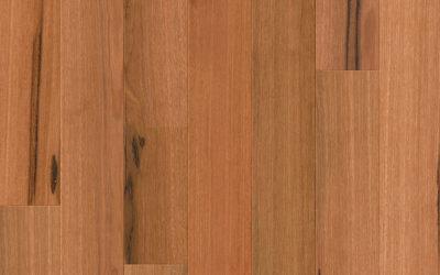 Premium Floors Quick-Step Compact Australian Species Engineered Timber Spotted Gum