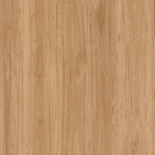 Premium Floors Titan Glue Vinyl Planks Bleached Blackbutt