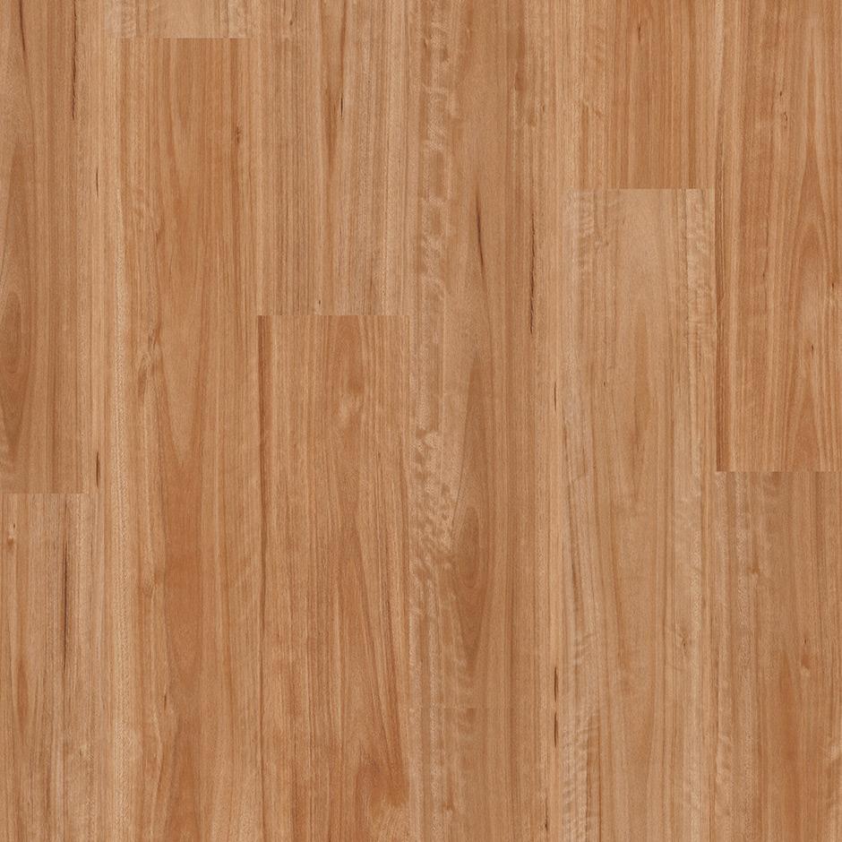 Buy Premium Floors Titan Hybrid Flooring Blackbutt