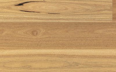 Clever Choice Australian Native 190mm Wide Engineered Timber Spotted Gum