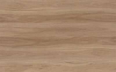 Avala Hybrid Flooring Blackbutt