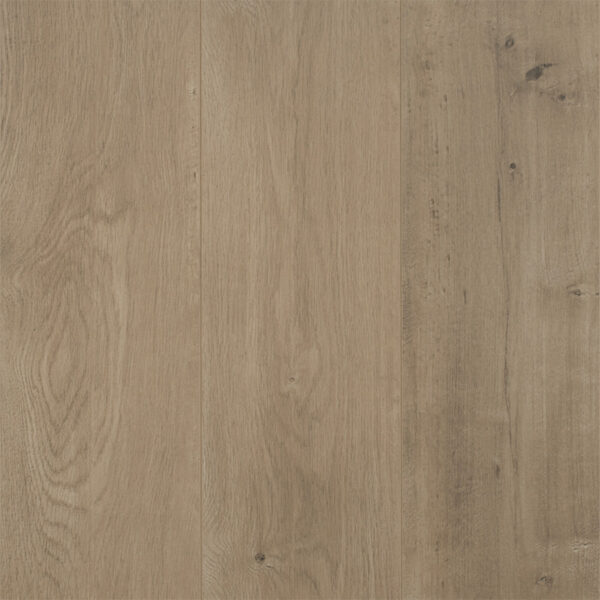 Reflections Evoke Collection Laminate Chalice