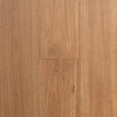 Australian Select Timbers Regency Hardwood Infinite Collection